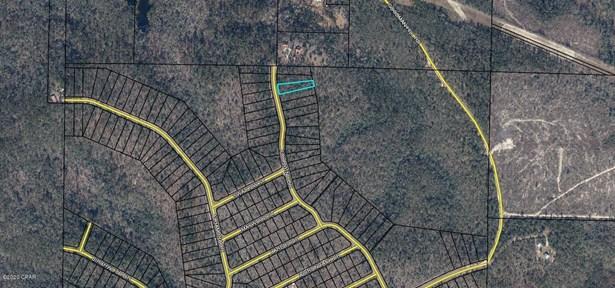 Residential Lots - Chipley, FL