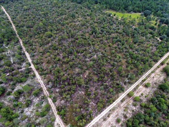 Land/Acres - Youngstown, FL (photo 4)