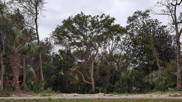 Vacant Land - Panama City, FL (photo 2)