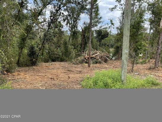 Residential Lots - Alford, FL