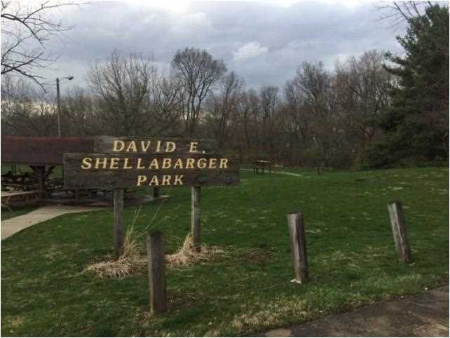 14132 West Heather Lane, Daleville, IN - USA (photo 3)