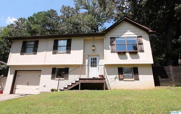 Single Family Residence - Springville, AL