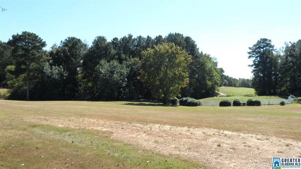 Lots - GLENCOE, AL (photo 3)
