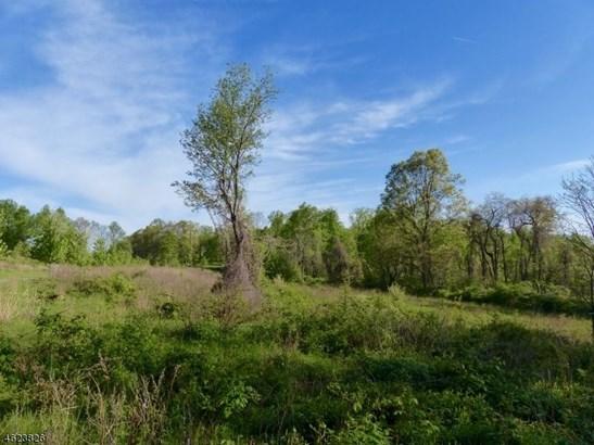 1 Preserve Ln, Bernardsville, NJ - USA (photo 4)