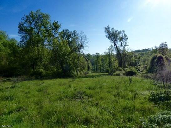 1 Preserve Ln, Bernardsville, NJ - USA (photo 5)