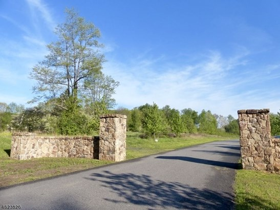 8 Preserve Lane, Bernardsville, NJ - USA (photo 2)