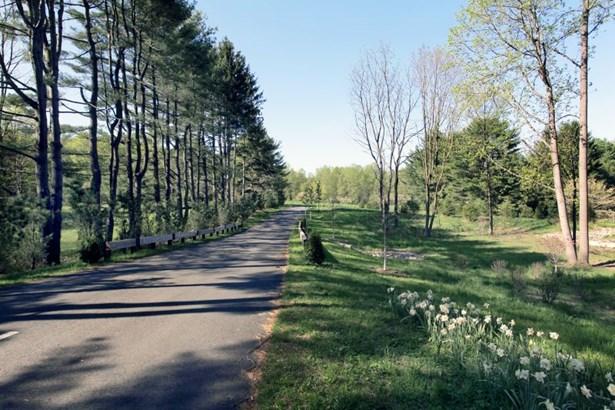 11 Pinefield Lane, Harding, NJ - USA (photo 4)