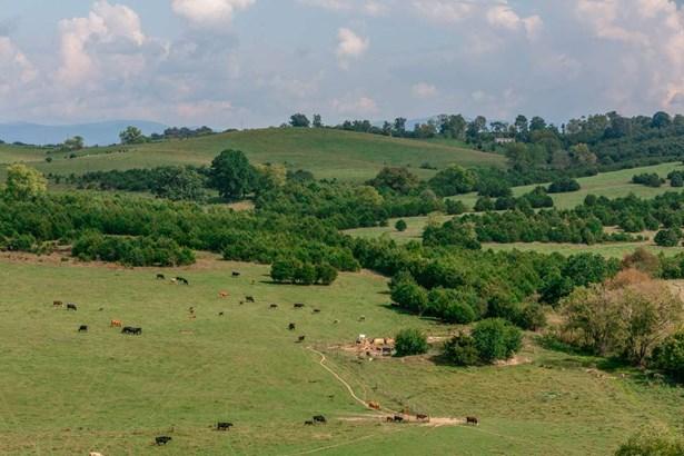 Agricultural - BRIDGEWATER, VA (photo 1)