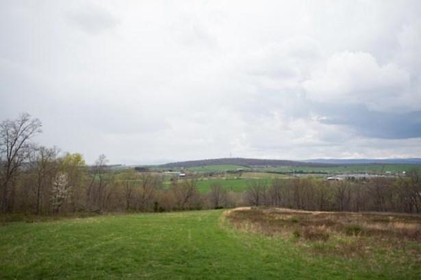 Agricultural - NEW MARKET, VA (photo 4)
