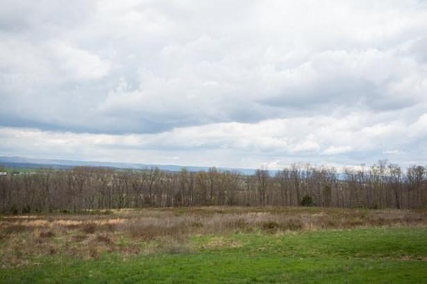 Agricultural - NEW MARKET, VA (photo 5)