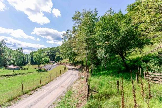 Agricultural - BERGTON, VA (photo 2)