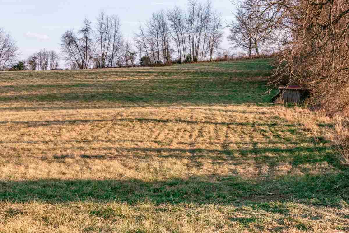 Building Lots - MOUNT CRAWFORD, VA (photo 3)