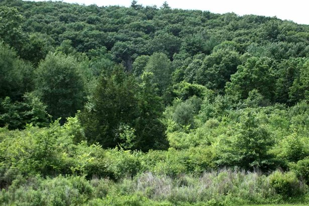 Residential - Saugerties, NY (photo 2)