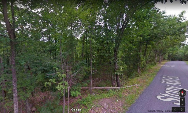 Residential - Accord, NY (photo 1)