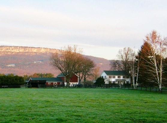 Farm House, Single Family - Gardiner, NY (photo 2)