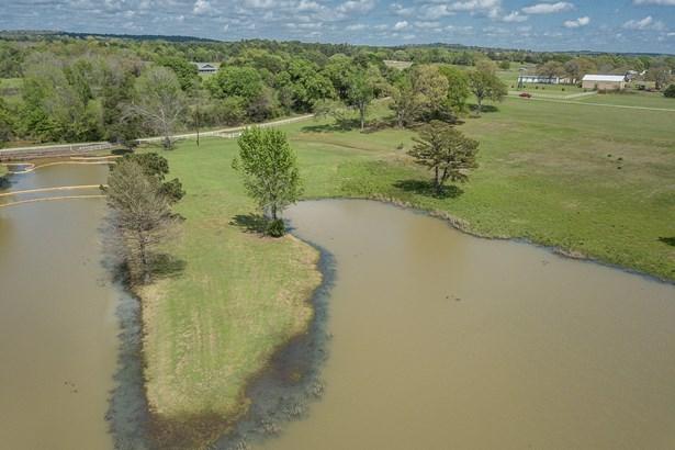 11870 Cr 4401, Larue, TX - USA (photo 2)