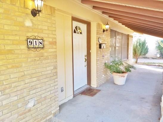 918 Sam Hill Street, Irving, TX - USA (photo 2)