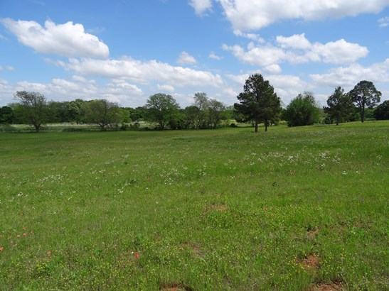 15 Ac Cr 222, Gainesville, TX - USA (photo 4)