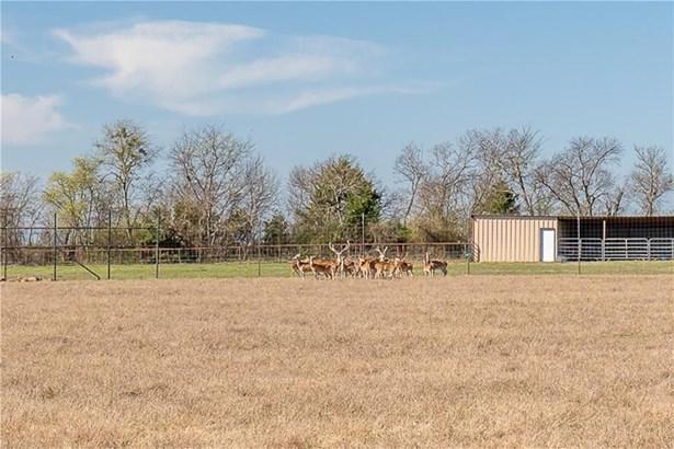 6800 County Road 305b, Grandview, TX - USA (photo 2)