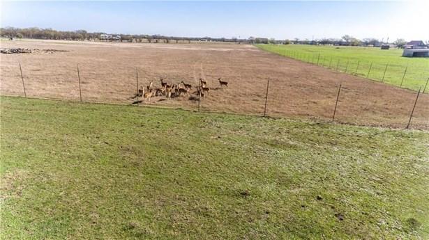 6800 County Road 305b, Grandview, TX - USA (photo 3)