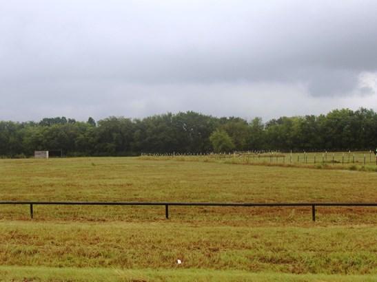 310 Cr 1250, Savoy, TX - USA (photo 5)