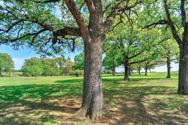 11362 E Hwy 82, Whitesboro, TX - USA (photo 3)