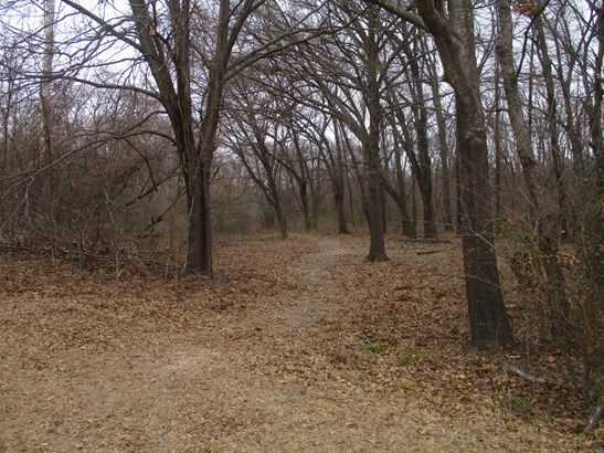2617 County Road 2605, Bonham, TX - USA (photo 3)