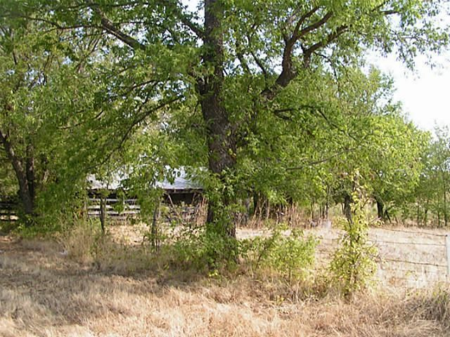 50+ac Fm 1743 A, Honey Grove, TX - USA (photo 2)