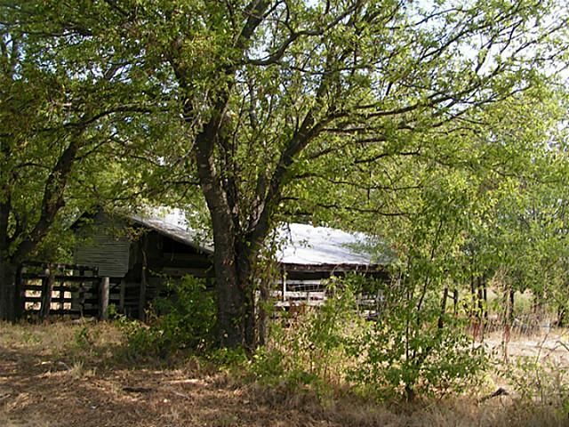 50+ac Fm 1743 A, Honey Grove, TX - USA (photo 3)