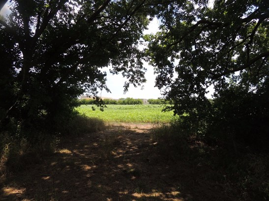 22 Ac W Lucas Road, Lucas, TX - USA (photo 3)