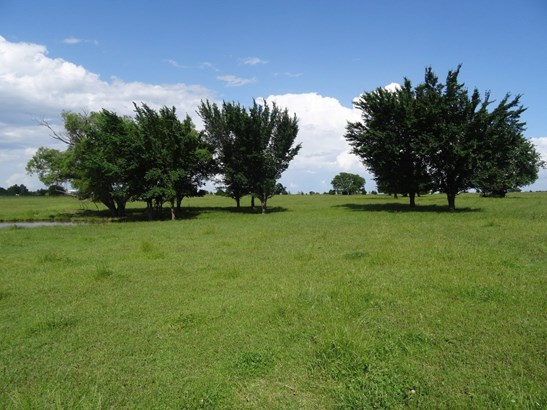 22 Ac W Line Road, Whitesboro, TX - USA (photo 4)