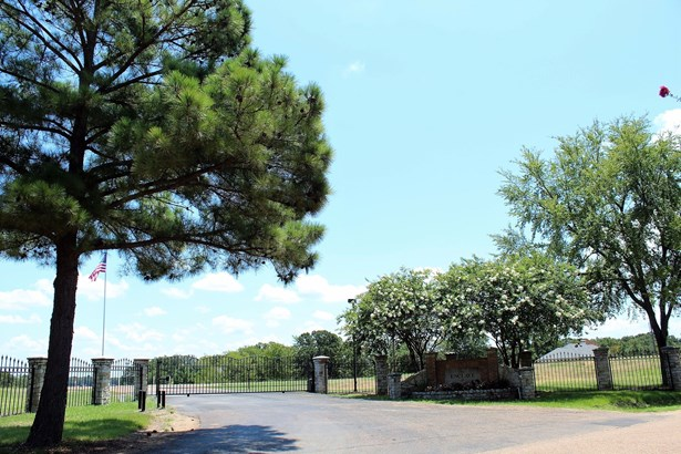 120 Adison Lane, Mabank, TX - USA (photo 4)
