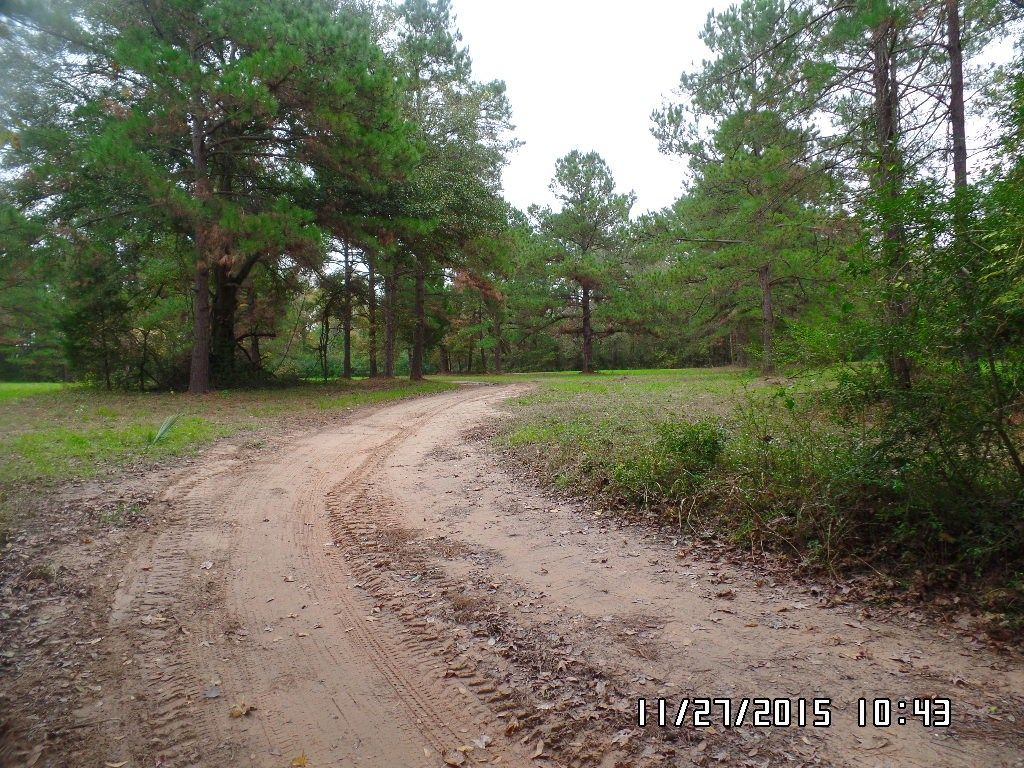 12485 Hwy 105, Conroe, TX - USA (photo 4)