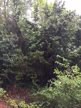911 Jungle Drive, Duncanville, TX - USA (photo 1)