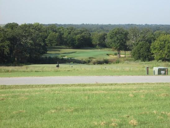 364 Toscana Circle, Gordonville, TX - USA (photo 2)