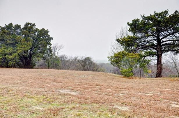 1345 Overlook Circle, Cedar Hill, TX - USA (photo 3)