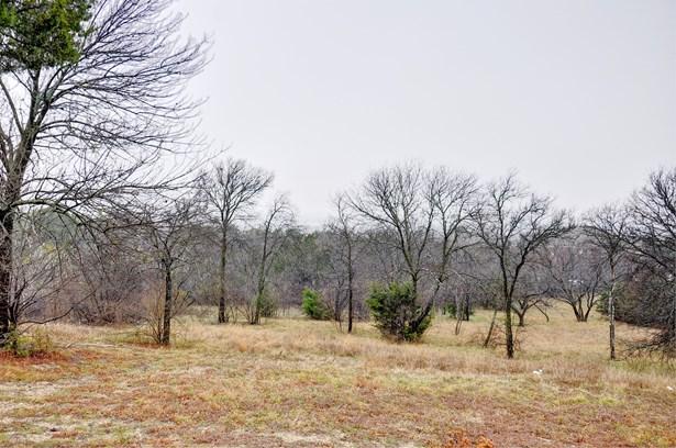 1345 Overlook Circle, Cedar Hill, TX - USA (photo 4)