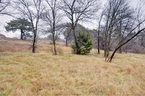 1345 Overlook Circle, Cedar Hill, TX - USA (photo 5)