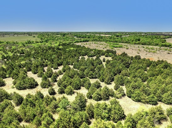109+ac Dripping Springs Road, Sherman, TX - USA (photo 2)