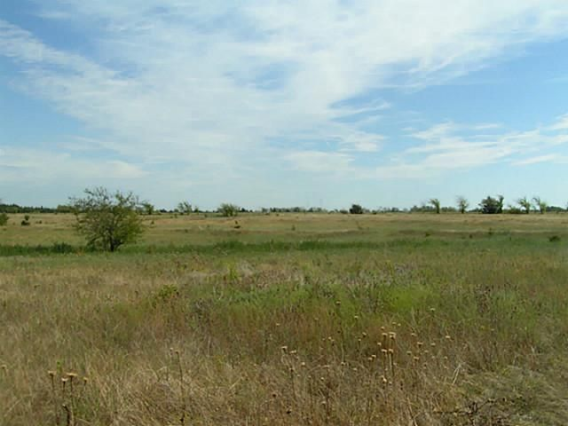 48+ Ac Fm 1743, Honey Grove, TX - USA (photo 2)