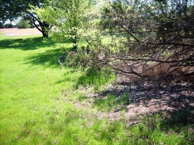 11+ Ac Dripping Springs Road, Denison, TX - USA (photo 2)