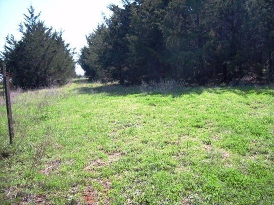 11+ Ac Dripping Springs Road, Denison, TX - USA (photo 5)