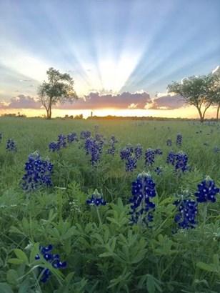 1433 Wilson Road, Waxahachie, TX - USA (photo 4)