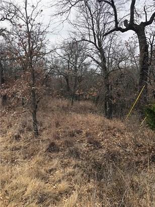 Tbd Pheasant Run, Sunset, TX - USA (photo 1)