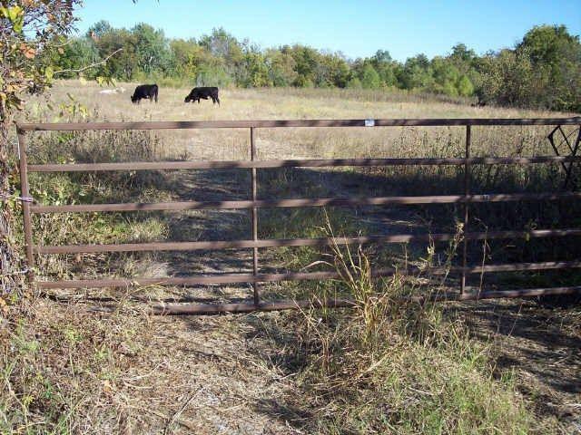 42+ Ac Hwy 121, Bonham, TX - USA (photo 3)
