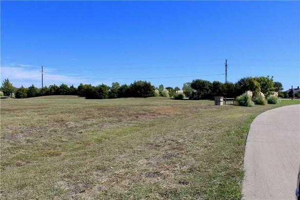 3602 Margaux Drive, Parker, TX - USA (photo 5)