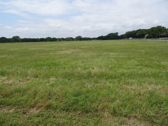 19 Ac Fm 2931, Pilot Point, TX - USA (photo 3)