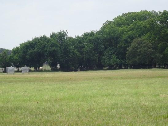 19 Ac Fm 2931, Pilot Point, TX - USA (photo 5)