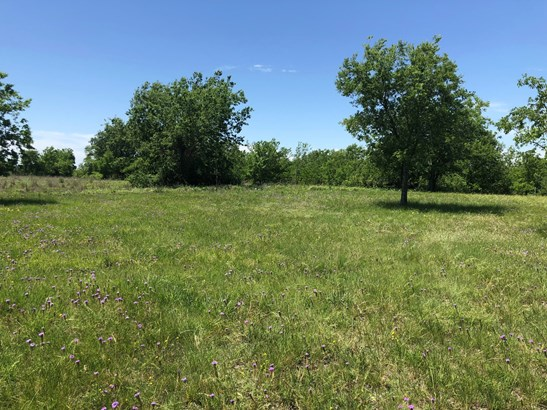 1.5 Ac Southside Drive, Gainesville, TX - USA (photo 4)