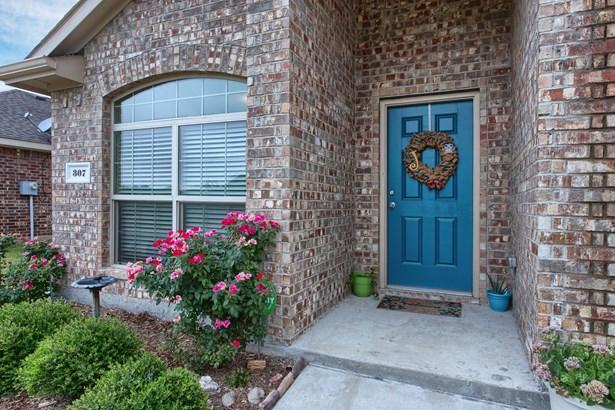 307 Elam Drive, Anna, TX - USA (photo 4)